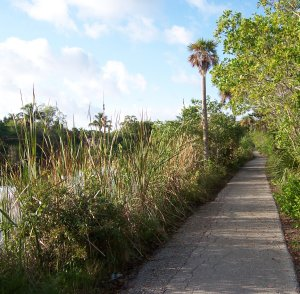 Rabbit Road section of Sanibel Island Bike Trail
